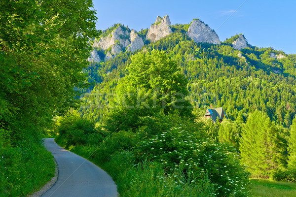 Trail to the top of the Three Crowns in Pieniny mountains. Stock photo © bogumil