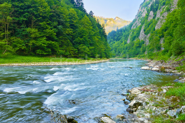The Dunajec River Gorge natural reserve. Stock photo © bogumil