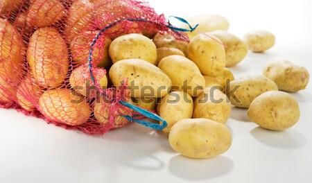 Taze patates beyaz dikey görüntü Stok fotoğraf © bogumil