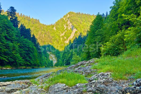 Kayalar sabah nehir güzel bahar çim Stok fotoğraf © bogumil