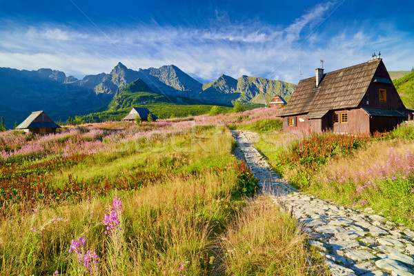 High Tatra Mountains top landscape nature Carpathians Poland Stock photo © bogumil