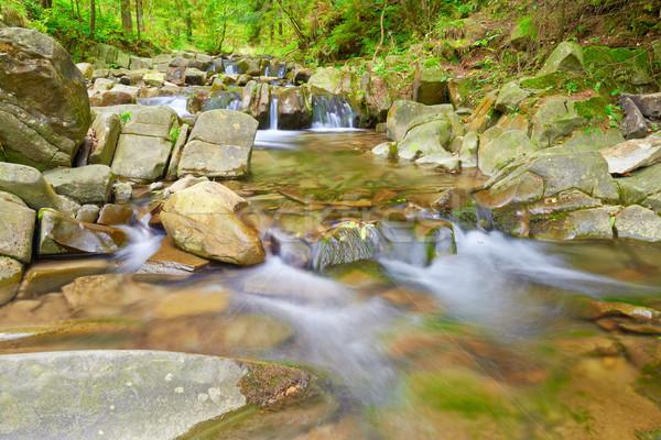 The Zaskalnik Waterfall in the Pieniny Mountains Range Stock photo © bogumil