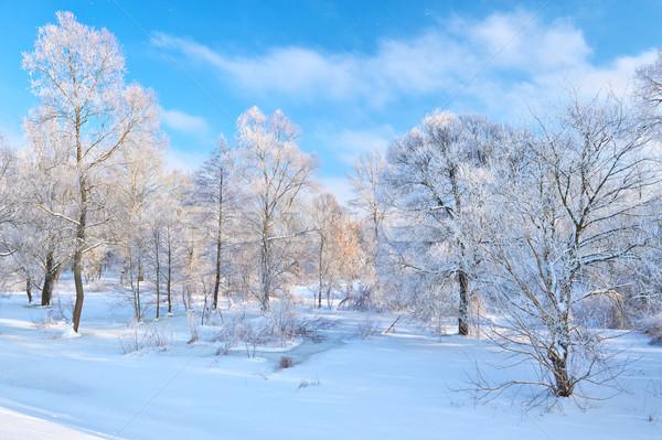 美しい 風景 川 谷 冬 雲 ストックフォト © bogumil