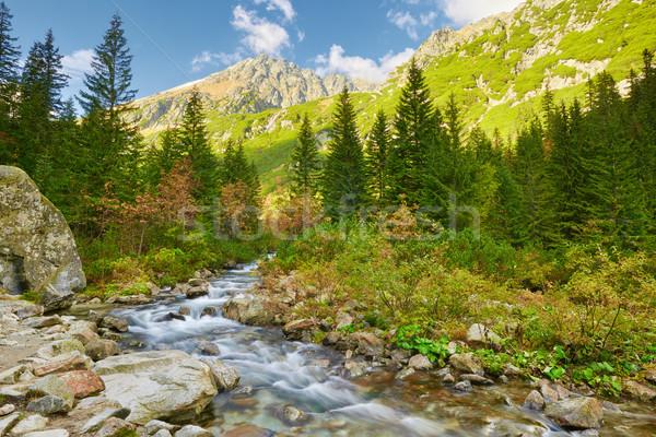 The Roztoka Stream. The High Tatras, Carpathian Mountains.  Stock photo © bogumil