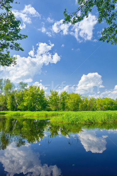 Estate panorama fiume nubi cielo blu acqua Foto d'archivio © bogumil