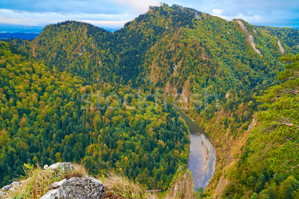 The Dunajec River Gorge. View from Sokolica Mountain. Stock photo © bogumil