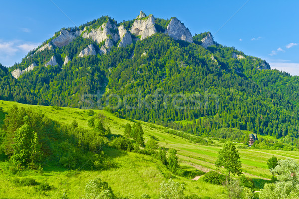 The Three Crowns massif in The Pieniny Mountains range. Stock photo © bogumil