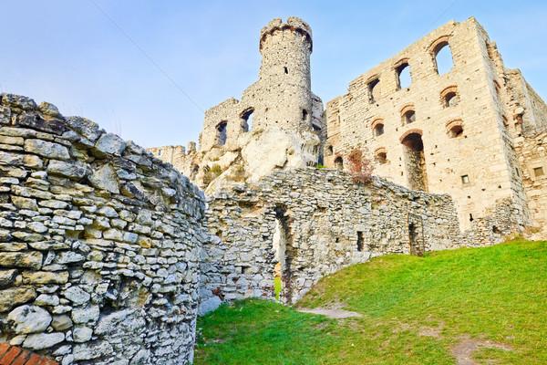 遺跡 城 ポーランド 古い 中世 歩道 ストックフォト © bogumil