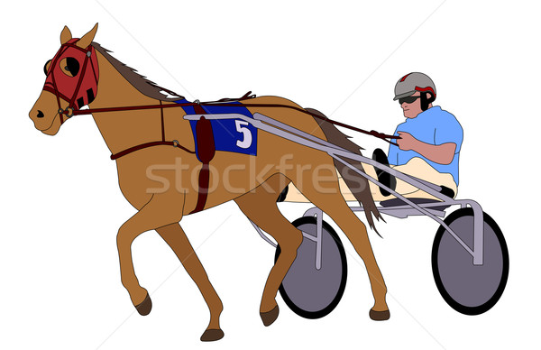 Trotter in harness illustration Stock photo © bokica