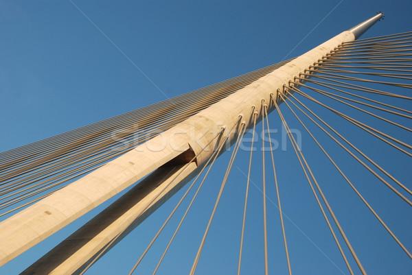 Pont Belgrade ville câble rivière acier Photo stock © bokica