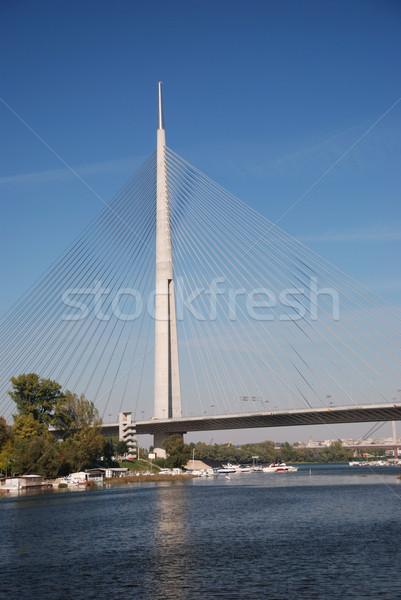 Pylon bridge, Belgrade - Serbia Stock photo © bokica