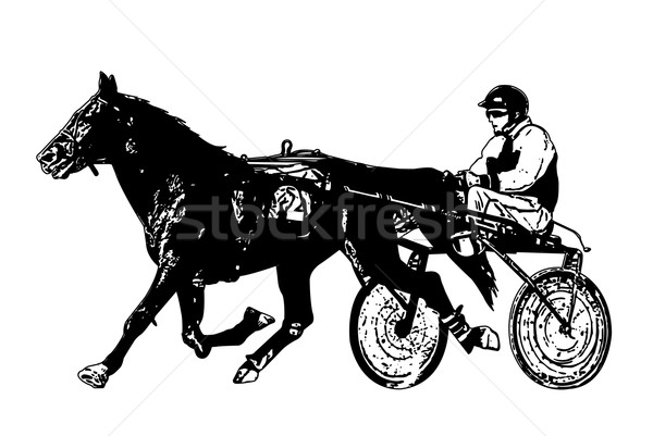 Harness Stock Photos Stock Images And Vectors