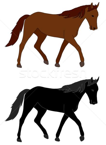 horse illustration Stock photo © bokica