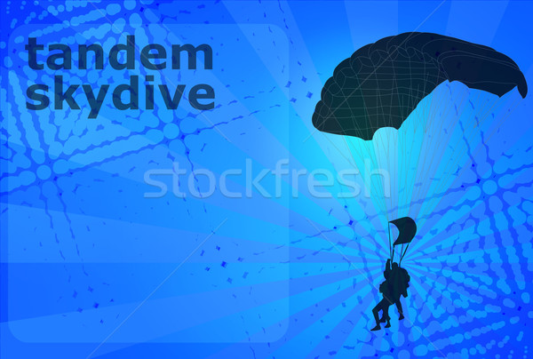 Skydiving tandem silhouet abstract sport snelheid Stockfoto © bokica