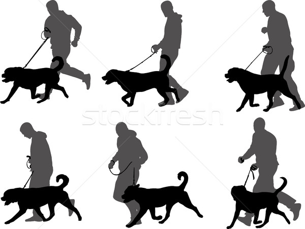 Homme formation chien exposition silhouettes Ouvrir la Photo stock © bokica