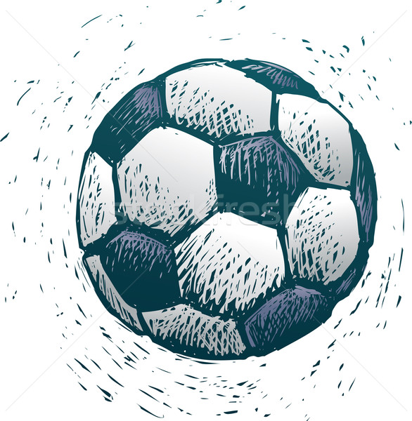 Soccer ball Stock photo © bonathos