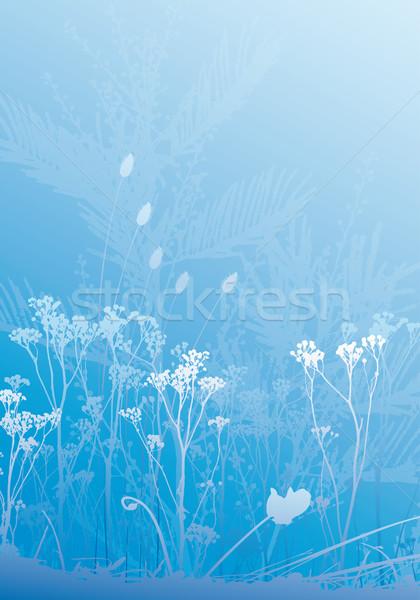 ハーブ 植物 シルエット 別 ストックフォト © bonathos