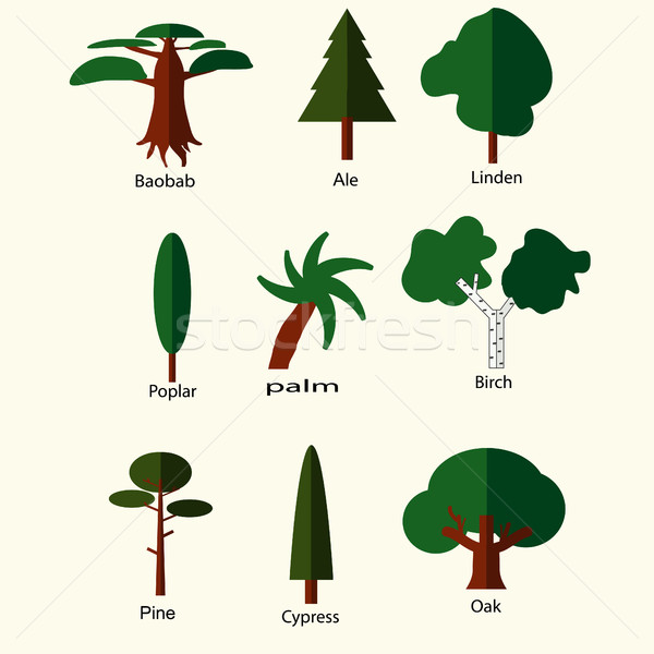 Flat trees set Stock photo © BoogieMan