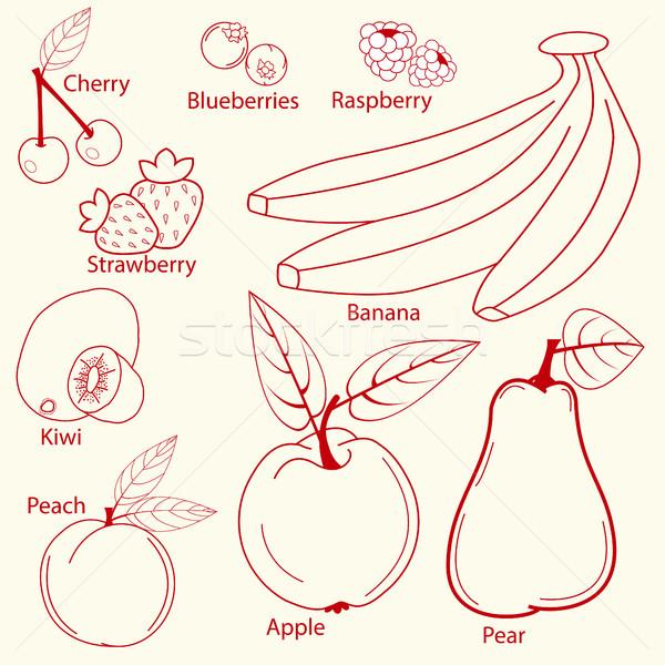 плодов набор линия дизайна банан Вишневое Сток-фото © BoogieMan
