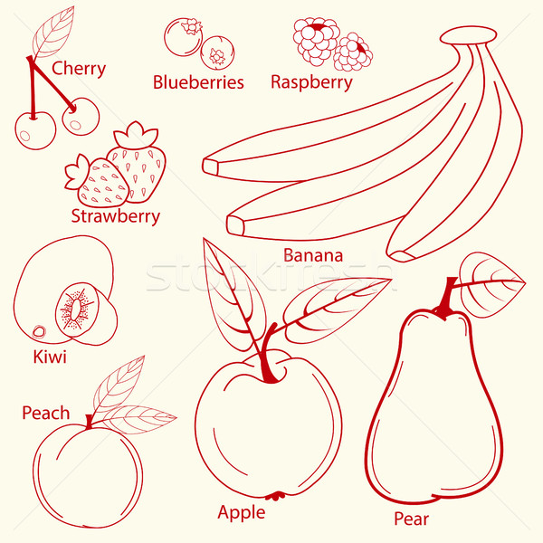 fruits set line design Stock photo © BoogieMan