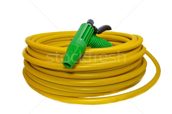 Hose for watering the garden with the spray Stock photo © Borissos