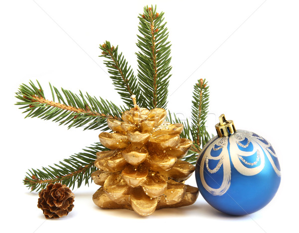 Isolated golden pine cone and blue Christmas ball Stock photo © borna_mir