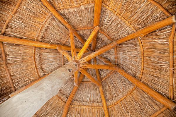 Geleneksel şemsiye saman plaj yaz Stok fotoğraf © borna_mir