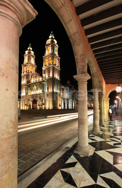 Katedral gece atış ışık sokak Stok fotoğraf © borna_mir