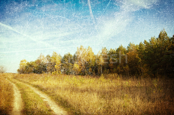 Rural landscape with dirt road vintage canvas. Stock photo © borysshevchuk