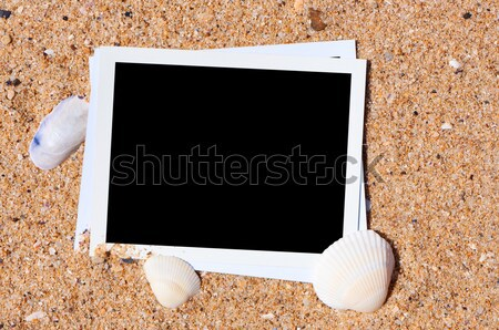 üres fotó tengerparti homok vakáció emlékek tengerpart Stock fotó © borysshevchuk