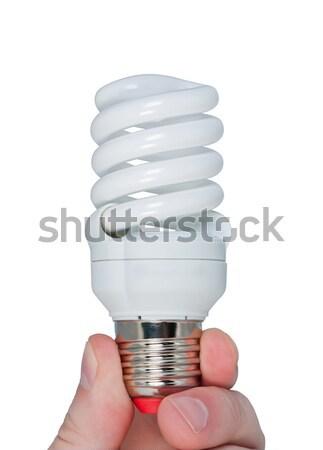 Energy saving lamp with green light in hand. Stock photo © borysshevchuk