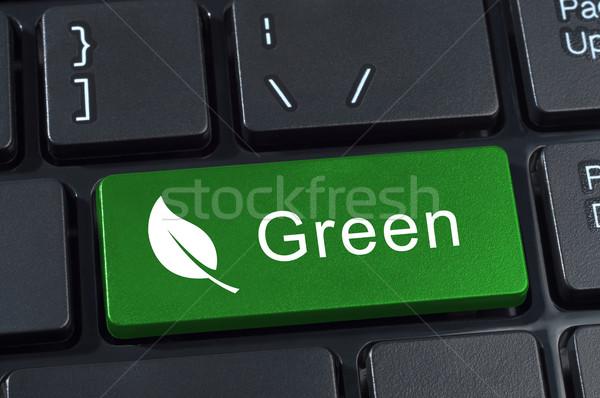 Groene knop toetsenbord icon blad ecologie Stockfoto © borysshevchuk