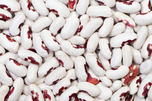 Bonen graan peulvruchten zaad Stockfoto © borysshevchuk