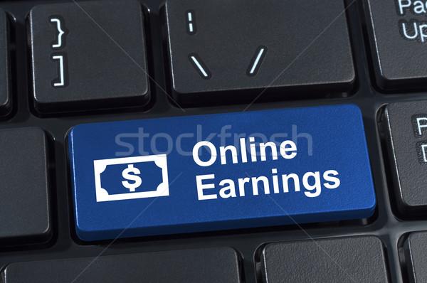 Online inkomsten knop geld internet Stockfoto © borysshevchuk