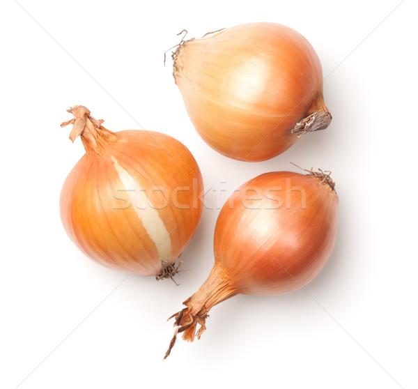 Onions Isolated on White Background Stock photo © Bozena_Fulawka