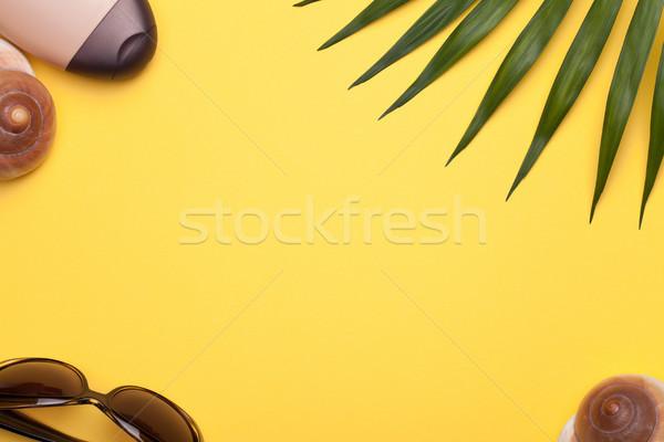Yaz tatili tatil plaj kabukları yeşil yaprak Stok fotoğraf © Bozena_Fulawka