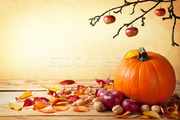 Autumn Concept Stock photo © Bozena_Fulawka