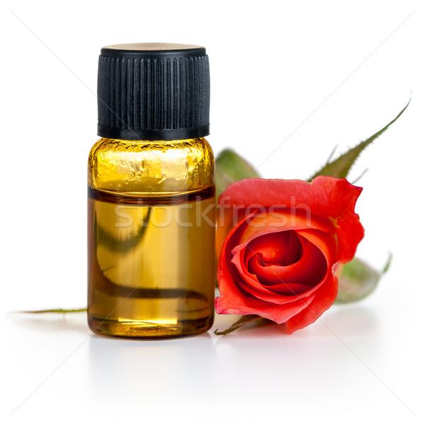 Steeg olie fles Rood rose bloem witte Stockfoto © Bozena_Fulawka
