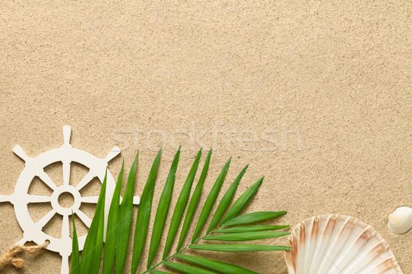 Imagine de stoc: Vară · verde · frunze · de · palmier · decorativ · navă · volan