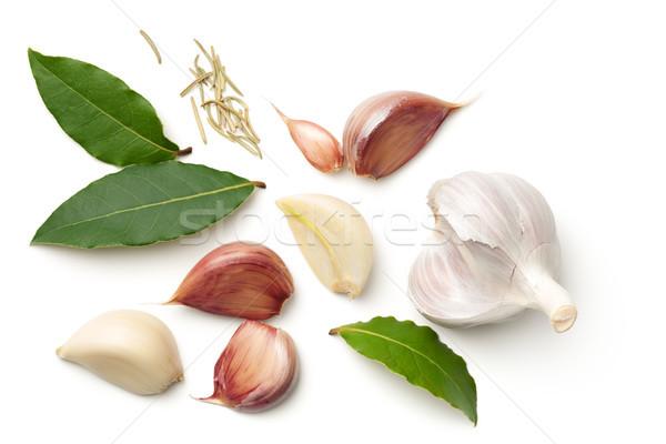 Garlic, Bay Leaves and Dried Rosemary Isolated on White Backgrou Stock photo © Bozena_Fulawka
