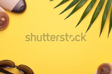 Nyári szabadság vakáció tengerpart kellékek zöld levél pálma Stock fotó © Bozena_Fulawka