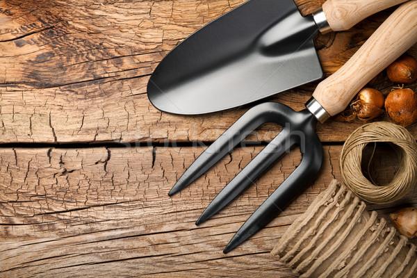 Kerti eszközök fából készült zsinór fa felső kilátás Stock fotó © Bozena_Fulawka
