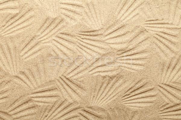 Shell patrones playa de arena naturaleza luz fondo Foto stock © Bozena_Fulawka