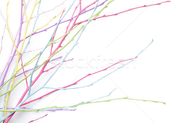 Spring, Easter, Pastel, Colorful Twigs Isolated on White Backgro Stock photo © Bozena_Fulawka