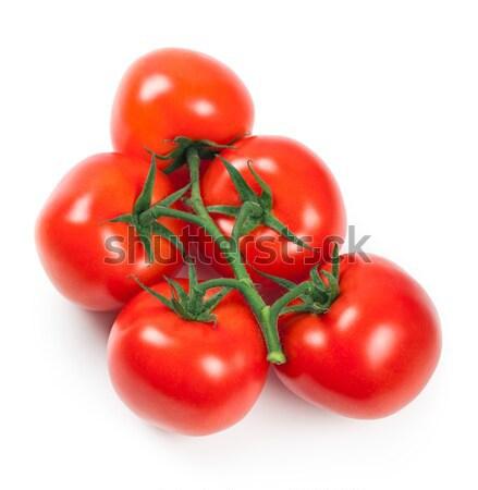 Tomaten tak vers witte achtergrond groene Stockfoto © Bozena_Fulawka