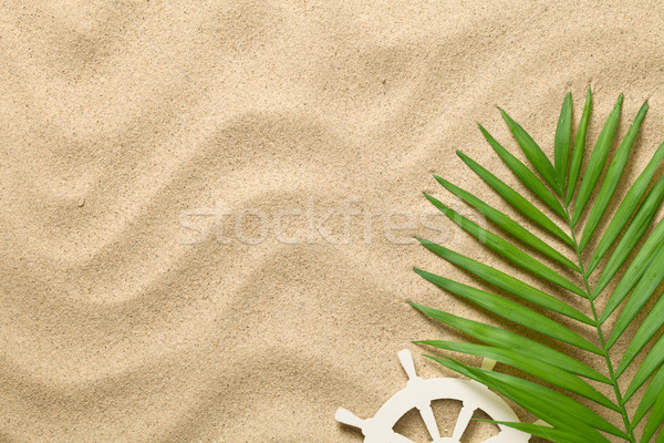 Nyár zöld pálmalevél dekoratív hajó ökör Stock fotó © Bozena_Fulawka