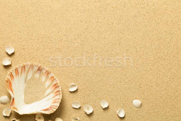лет песок снарядов пляж текстуры копия пространства Сток-фото © Bozena_Fulawka