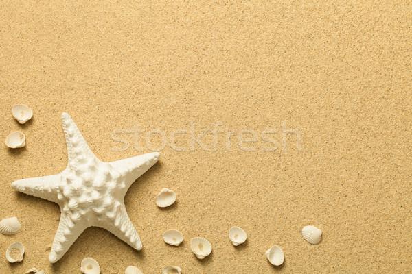 Verano arena estrellas de mar conchas playa textura Foto stock © Bozena_Fulawka
