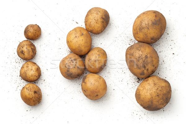 свежие органический картофель изолированный белый Top Сток-фото © Bozena_Fulawka