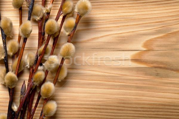 Пасху киска ива филиала деревянный стол Top Сток-фото © Bozena_Fulawka
